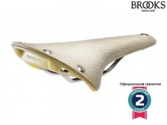 Brooks Cambium C17 Organic Light